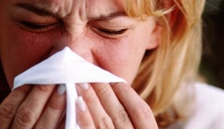 Alergia na kurz i roztocza